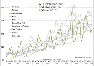 Vegetables inflation, 2004-2013