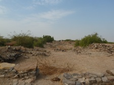 Neglected Dholavira